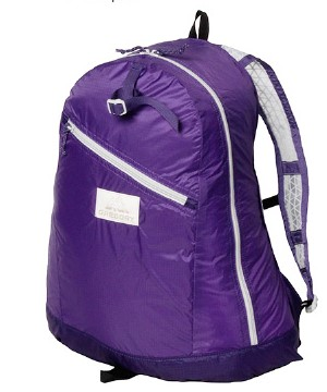 Gregory Day Pack LT-Purple
