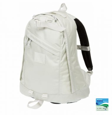 Gregory Daypack – ALL WHITE