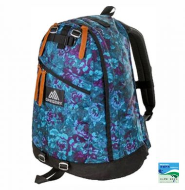 Gregory Daypack – Blue Tapestry